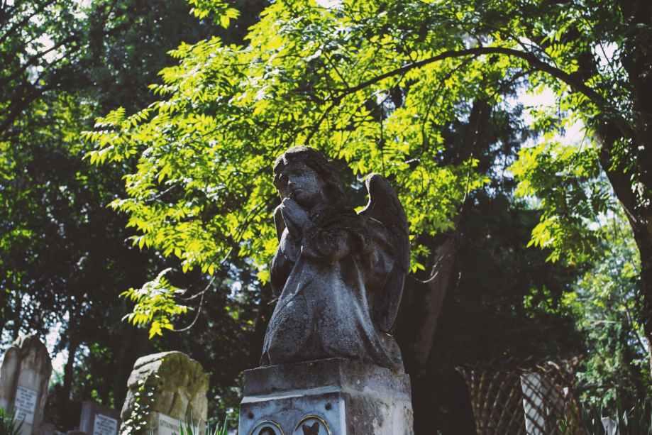 angel blur branches cemetery